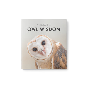 Little Book of Owl Wisdom