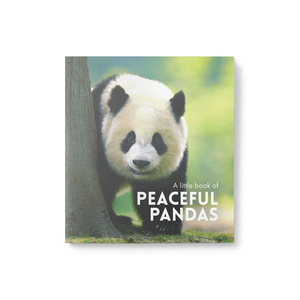 Little Book of Peaceful Pandas