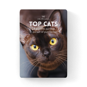 DCA - Top Cats - 24 card pack + stand
