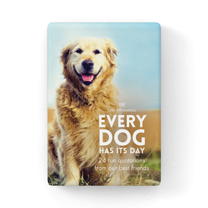 DOG - Every Dog Has It's Day