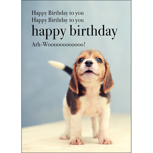 M01 - Happy Birthday - Animal greeting card
