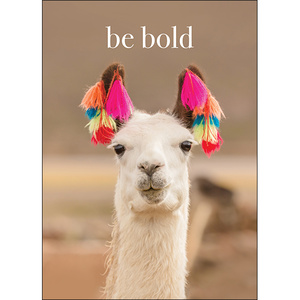 M106 - Be Bold - Animal greeting card