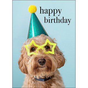 M109 - Happy Birthday you party animal! - Animal Greeting Card