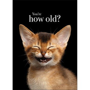 M32 - You're how old? - Animal greeting card