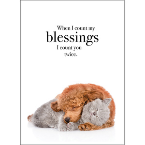 M39 When I count my blessings - Animal greeting card