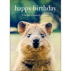 M84 - Happy Birthday. You are a limited edition! - Animal greeting card