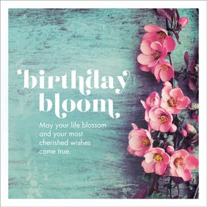 R260 - Birthday Bloom