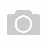 T346 - Happy Birthday. May you be as happy as a seagull with a French fry.