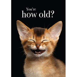 TM15 - You're how old? Cat Little Card