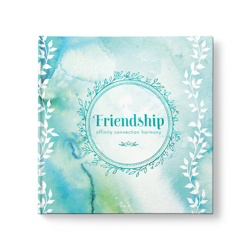Friendship - affinity, connection, harmony