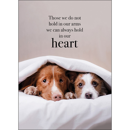 M40 - Those we do not hold in our arms - Animal greeting card