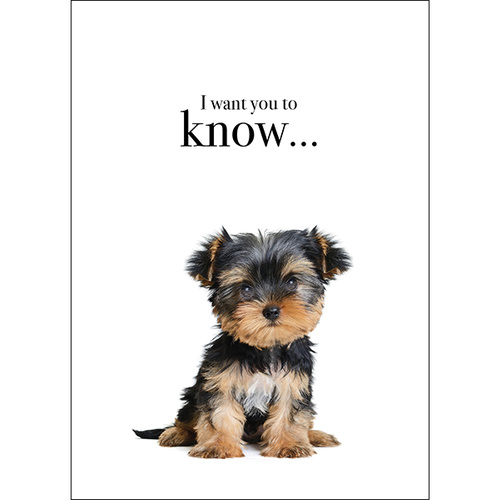 M54 - I want you to know - Animal greeting card