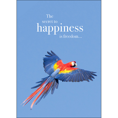 M61 - Happiness - Animal greeting card